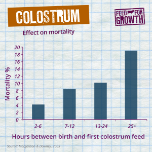 Colostrom-effect-on-mortality-FB